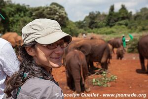 David Sheldrick Sanctuary - Nairobi - Kenya