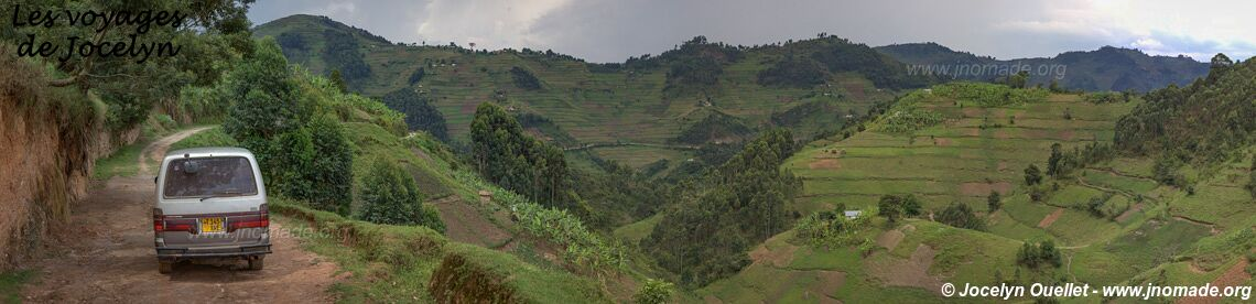 Bwindi Impenetrable Forest - Uganda