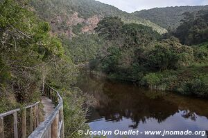 Wilderness National Park - Garden Route - South Africa
