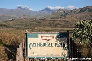 Cathedral Peak area - uKhahlamba-Drakensberg - South Africa