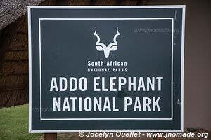 Parc national Addo Elephant - Afrique du Sud