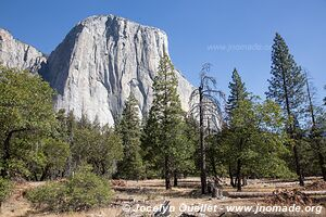 Parc national de Yosemite - Californie - États-Unis