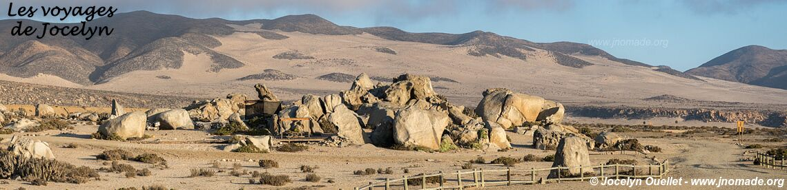 Llanos de Challe National Park - Chile
